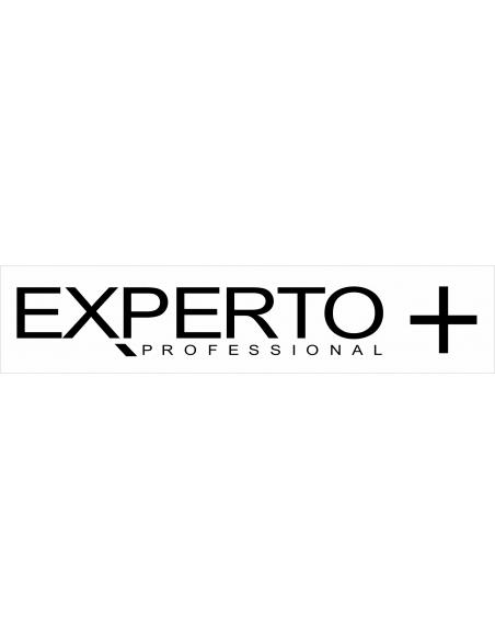 Experto +